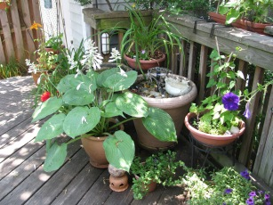 KBOwen Porch