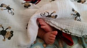 My Little Guy's Monkey Feet